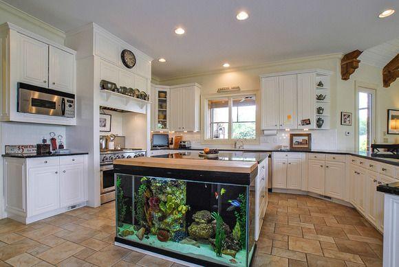 aquario-balcao-cozinha