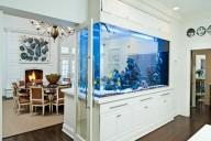 aquario-como-divisor-de-ambiente