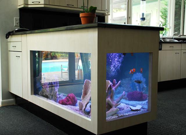 aquario-em-balcao-de-cozinha
