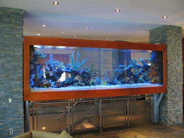 aquario-entre-escada-e-sala