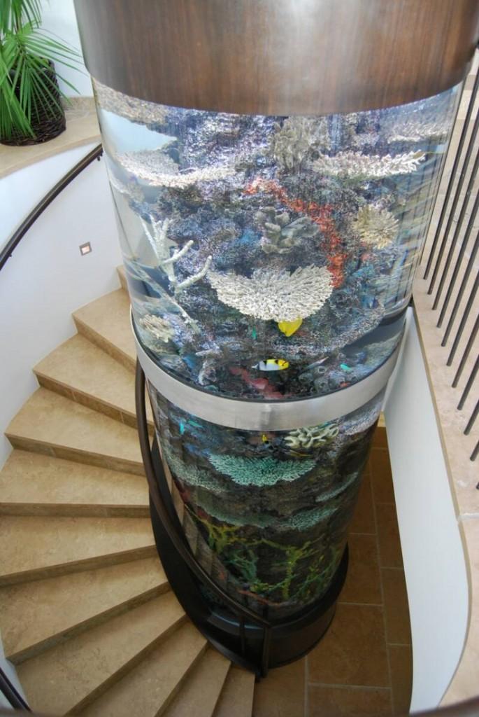 aquario-no-centro-da-escada-casa