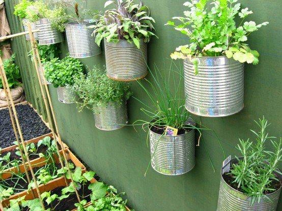 horta-caseira-em-latas-de-aluminio