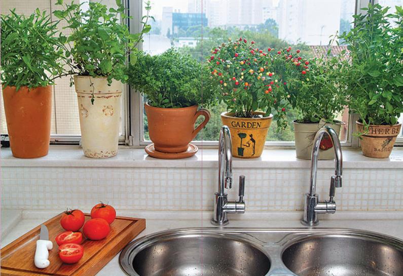 vasos-na-janela-cozinha-horta