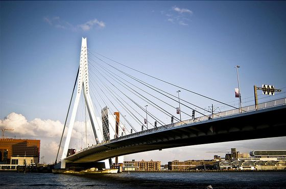 erasmus-bridge-netherland