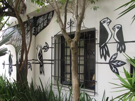 grafite-passaros-muro-quintal