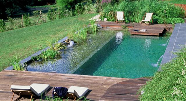 piscina-naturalizada-quintal