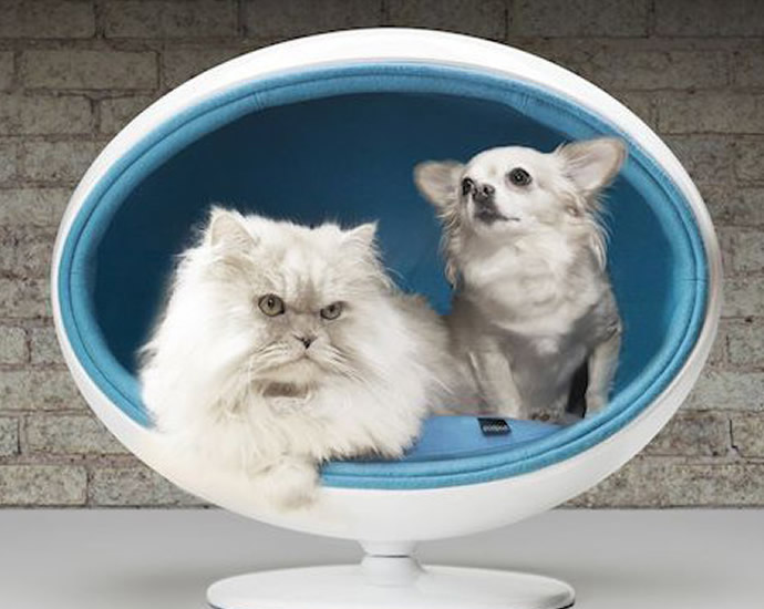 cama-para-gato-cachorro-azul-padpod