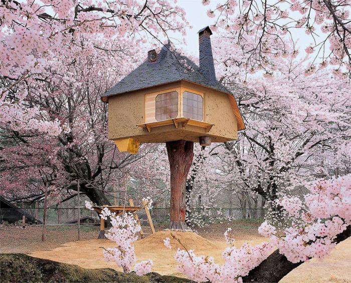 casa-na-arvore-japao