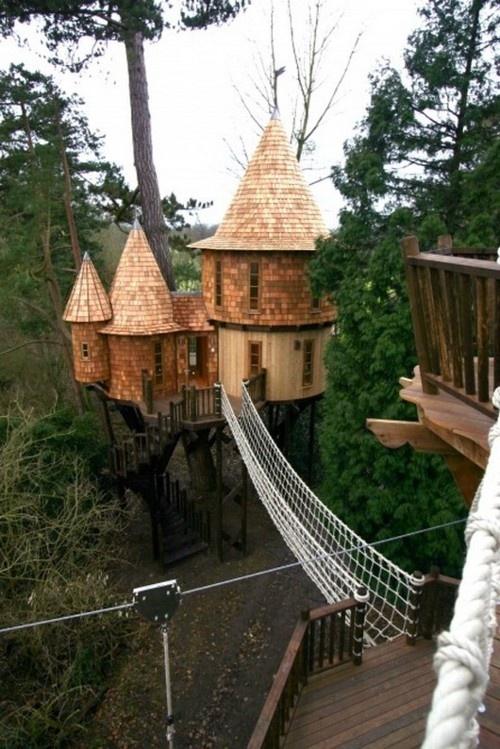 castelo-construido-em-arvore