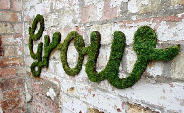 moss-graffiti-escrita-parede