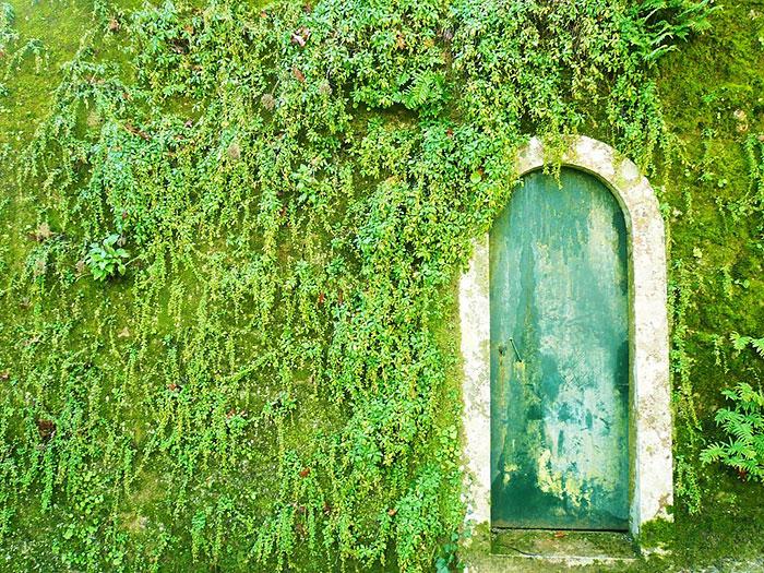 porta-casa-lisboa-portugal