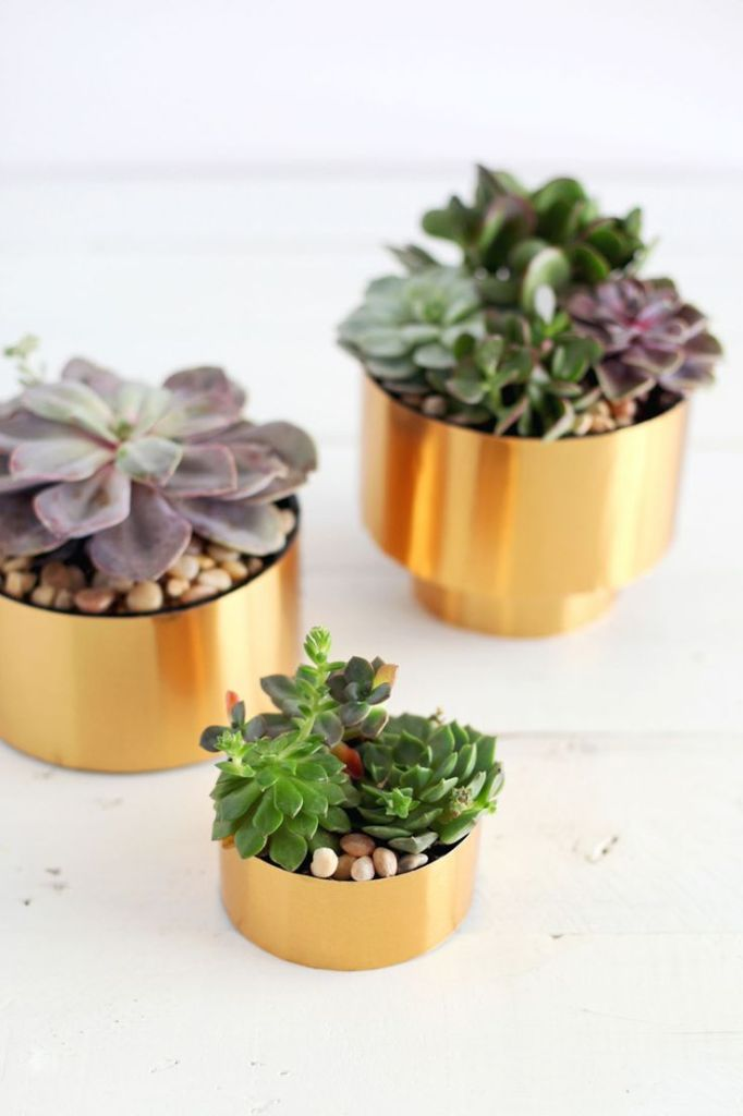 vasos-dourados-plantas