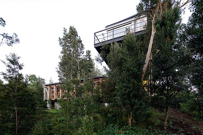 casa-meio-vegetacao-sob-ponte