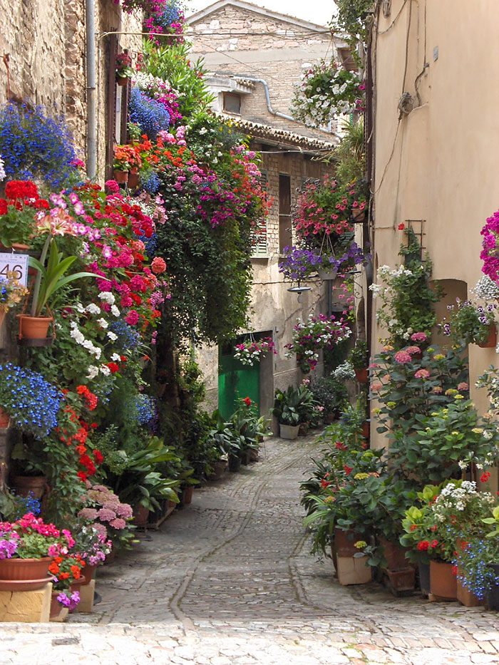 flores-na-rua-spello-italia