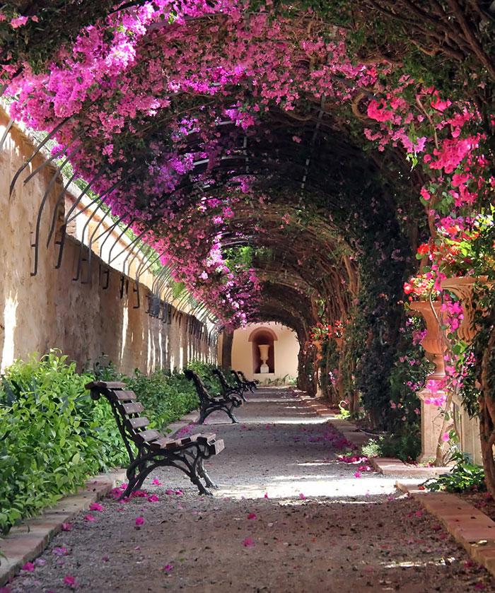 passarela-florida-valencia-espanha