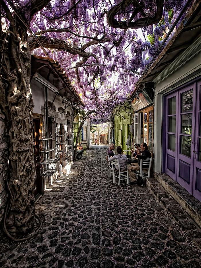 rua-florida-molyvos-lesvos-grecia