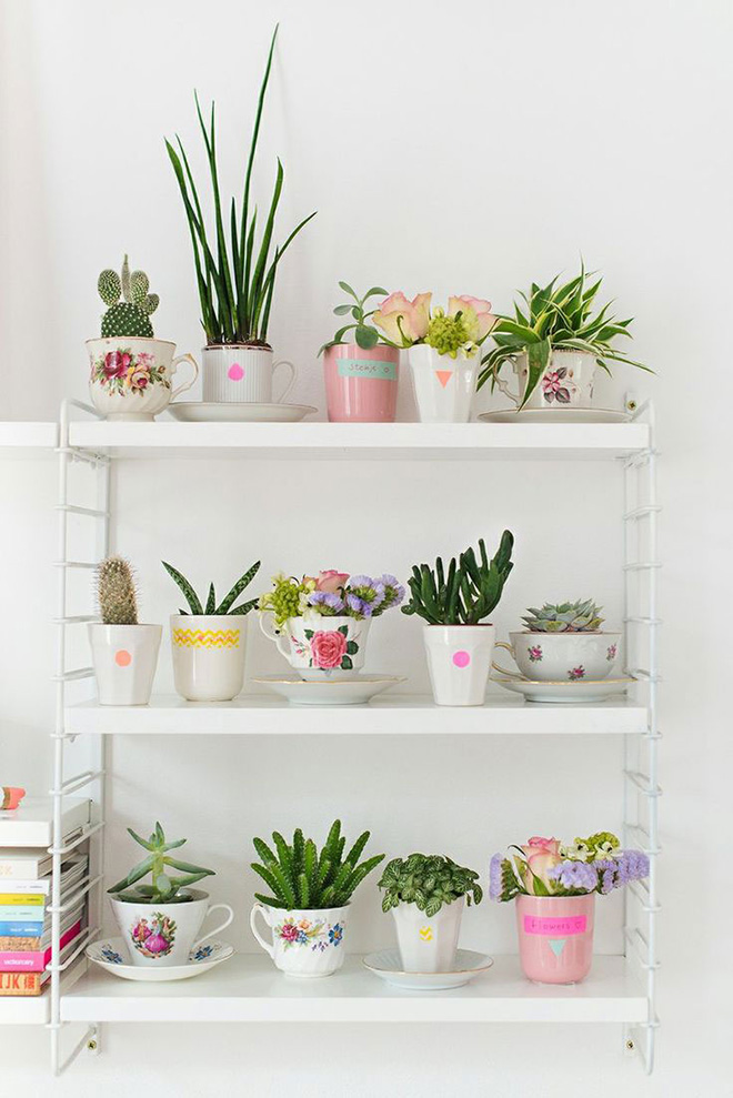 vasinhos-de-flores-estante-sala