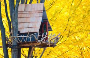 14 Casas na árvore incríveis